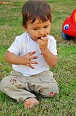 One Years Old Boy Eating Chocolate On The Grass