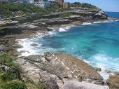 The cliff walk to Bondi Beach