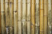 Bamboo to build a wall or partition.