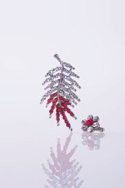 picture of brooch  - crystal brooch or fashion brooch on the background - JPG
