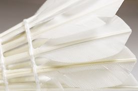 pic of shuttlecock  - A Feathered White Shuttlecock - JPG