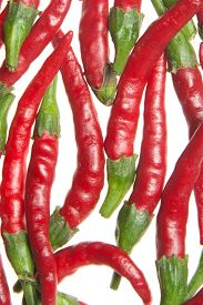 picture of red hot chilli peppers  - red hot chilli peppers - JPG