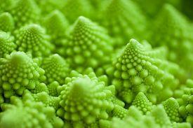 image of romanesco  - Fresh green cabbage romanesco - JPG