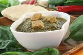 picture of paneer  - Indian Palak Paneer with rice and fresh ingredients - JPG