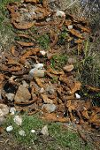 stock photo of irish moss  - some discarded horse shoes from a forge - JPG