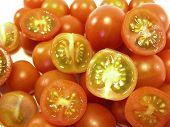 Tomatinhos Iii