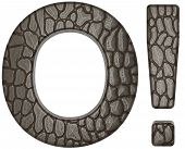 Alligator Skin Font Exclamation Mark And O Letter