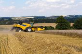 Постер, плакат: Summer Harvesting With Automatic Harvester