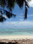 Idyllic tropical beach on Rarotonga, Cook Islands