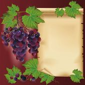 Background With Black Grapes And Old Paper - Place For Your Text