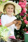 Gardening, planting - Lovely gardener girl planting seedling into the flowerpot