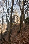 Autumn Sulovske Skaly Mountains Scenery With Trees, Rocks, Fallen Leaves And Clear Sky In Slovakia poster