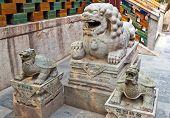 Постер, плакат: Китайский guardian Лев и черепахи