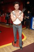 LOS ANGELES - DEC 13:  Hugh Jackman wax figure at the Hollywood Walk of Fame ceremony for Hugh Jackm