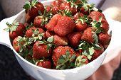 Strawberries_served