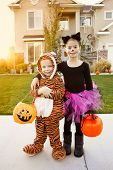 stock photo of cute tiger  - Kids Going Trick or Treating on Halloween - JPG