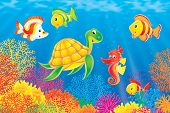 Coral Fishes, Turtle And Seahorse