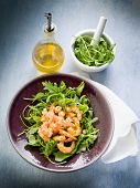 shrimp salad with arugula olive oil and balsamic vinegar