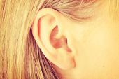 Color closeup picture of blond girl ear