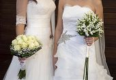 stock photo of lesbian  - civil wedding of a lesbian couple with two brides - JPG
