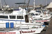 Fishing Boats Moored At Wilsons Wharf In Durban South Africa