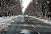 Frozen road in the winter at wooded country