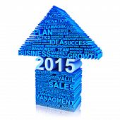 Business plan for improvement in 2014