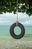 An old tire swing in the south pacific hangs from a tree on a beautiful tropical beach.