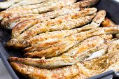 Sardines Being Prepared With Sea Salt On A Barbecue Grill  Hotplate