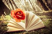 Book And Rose