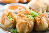 Deep fried chinese dumpling