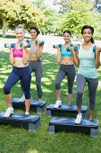 pic of step aerobics  - Full length portrait of sporty women doing step aerobics with dumbbells in park - JPG