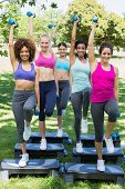 Full length portrait of female friends doing step aerobics with dumbbells in park