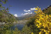 Pure Mountain Lake