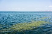 Pollution Problem, Environmental Pollution, Garbage In The Ocean.