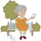 Grandmother on the bench feeding birds