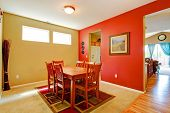 Bright Contrast Dining Room Interior