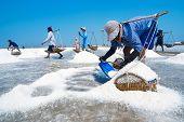 Salt Farming In Thailand