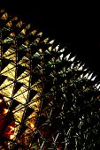 Singapore Esplanade Theater At Night - Abstract