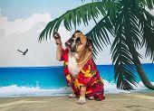 Bulldog on beach scene waving