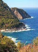 Picturesque Rocky Coast Of Elba Island, Italy