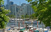 VANCOUVER, CANADA JULY 24: Downtown Vancouver and marina on July 24, 2014