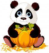 Illustration of cute panda holds pumpkin