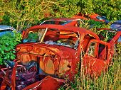 Rusted Cars In The Woods