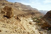 stock photo of ravines  - Ravine in Makhtesh Katan crater in Negev desert Israel - JPG