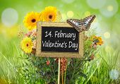 An image of a little chalkboard in the garden with the text 14th of february Valentines Day