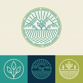image of food logo  - Vector agriculture and organic farm line logos  - JPG
