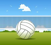 image of volleyball  - Vector illustration of volleyball ball and net - JPG
