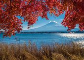 Mount Fuji And Autumn Maple Leaves, Kawaguchiko Lake, Japan