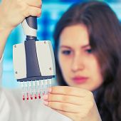 stock photo of microbiology  - womanl with multi pipette in the laboratory of microbiology - JPG